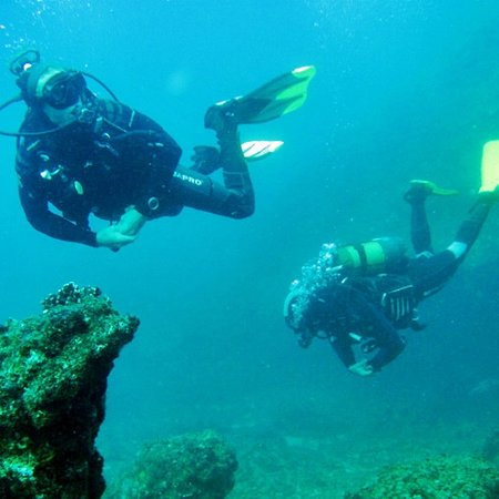 Adventure's Edge Dive & Outdoor Centre: Divers