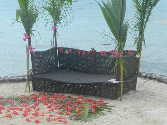 Sofitel Bora Bora Marara Beach Resort: pour notre mariage ,sur la plage