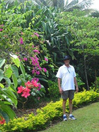 The Hidden Spirit Cafe & Grill: Tropical gardens