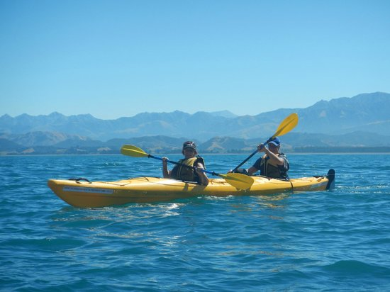 Kaikoura Kayaks: Photo taken by our guide