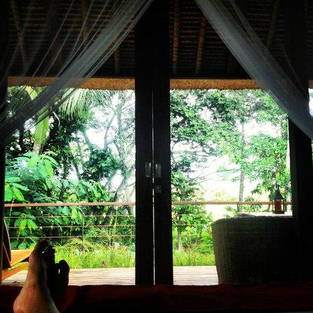 RedDoor Bali: view from the bed