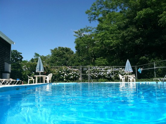 Olde Tavern Motel & Inn : Beautiful Large Heated Pool; Located amongst the tranquility of our backyard grounds!