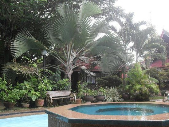 Alona Tropical Beach Resort: Jacuzzi