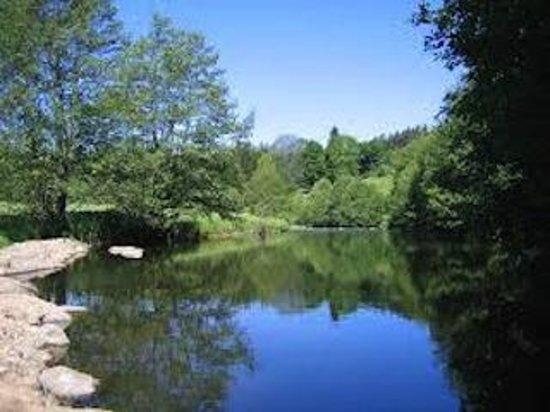 L'Auberge Chez Leon: La rivière Le Lignon