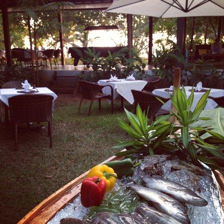 Islanda Hideaway Resort: Seafood BBQ