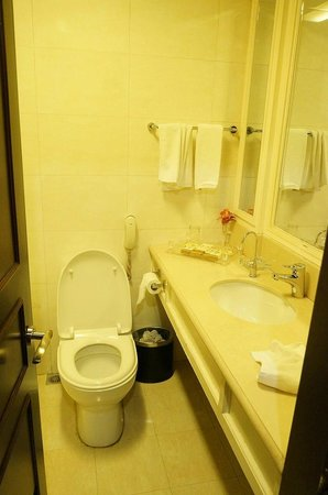 Harbin LongMen Hotel: バスルーム