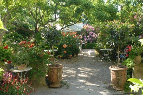 La Nesquiere : La terrasse fleurie