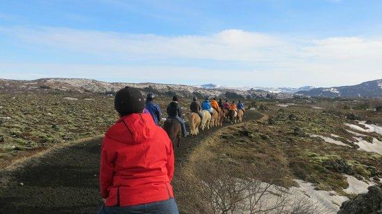 Eld Hestar Horseback Tours