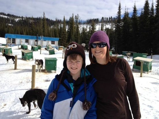 Mountain Man Dog Sled Adventures: Very well kept dog kennels, very healthy and happy dogs