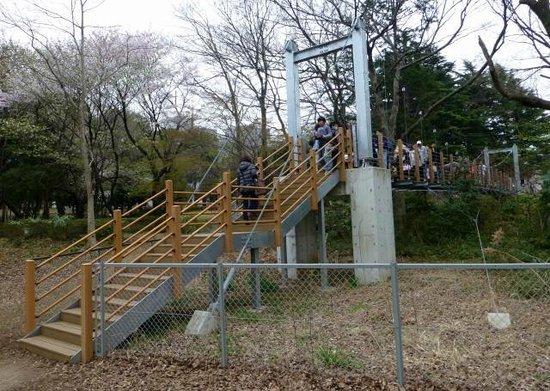 Kinuta Park: 歩行者専用の吊り橋。 あえて、よく揺れるような構造でした。