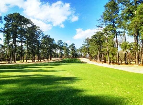Southern Pines Golf Club: #17