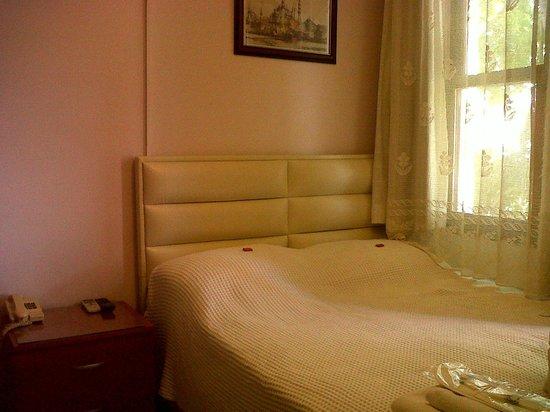 Antique Hotel : Standart Double Room