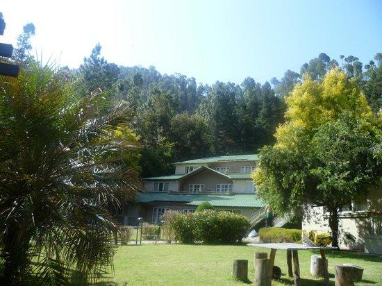 Binsar Vally resort