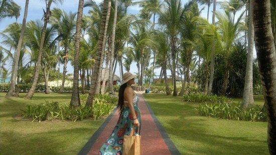 Grand Palladium Palace Resort Spa & Casino: caminando a la playa verde por todos lados