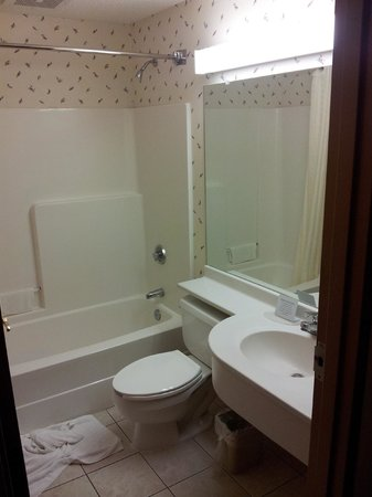 Microtel Inn & Suites by Wyndham Ann Arbor: Bathroom shot
