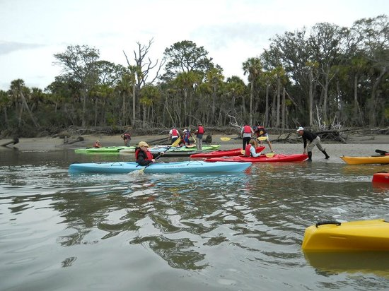 Beaufort Kayak Tours: Casting off from the Lagoon.