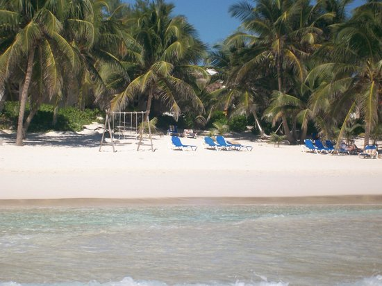 Cabanas Tulum: Vista desde el mar hacia la habitación