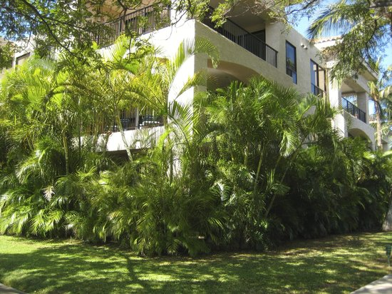 Aston Shores at Waikoloa: Our unit behind the foliage