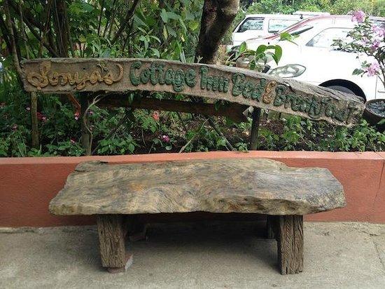 Sonya's Garden B&B: Nice bench