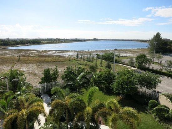 Courtyard Miami West/FL Turnpike: Vista do apartamento