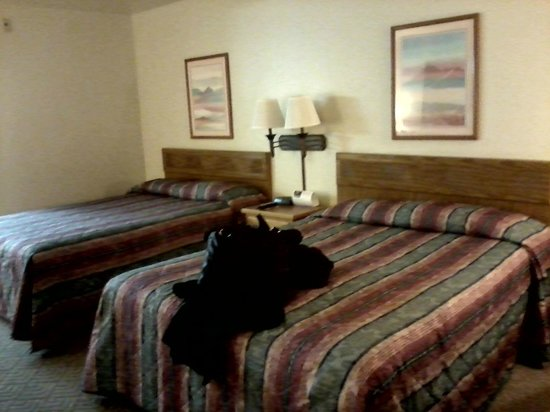 Super 8 Costa Mesa/Newport Beach Area: This is the double queen version of their rooms