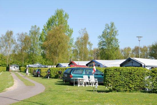 Sakskobing Camping : Sakskøbing Camping