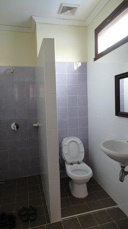 Hotel Khamvongsa: Standing shower & toilet