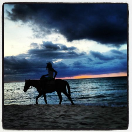 Nirvana on the Beach: Horseback riding is offered along the beach.