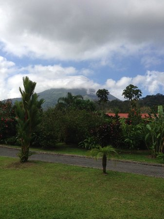 Volcano Lodge & Springs: View of Arenal volcano from the cafe/pool area