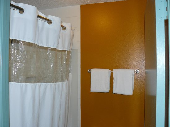 Howard Johnson Inn - Ocala FL: There were only 2 bath towels.