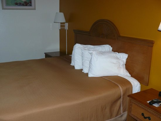 Howard Johnson Inn - Ocala FL: The bed and pillows were fairly comfortable.