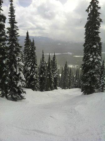 Big White Ski Resort: Crowded slopes! NOT
