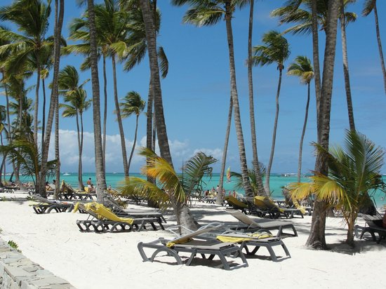 Barcelo Bavaro Palace Deluxe: Beach area right outside room