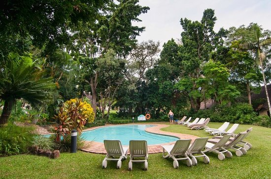 Sabi River Sun Resort: The pool in front of our cottage