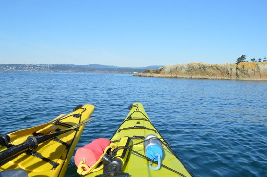 "Kelp Reef Adventures: ""Classic Kayak photo"""