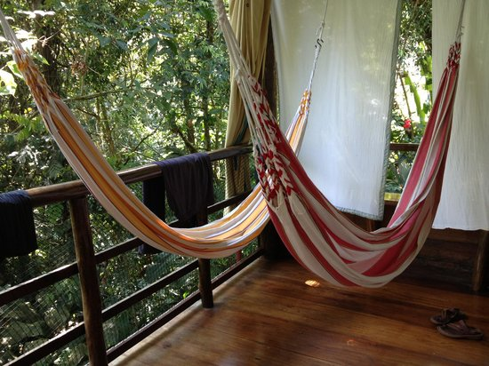 ‪‪La Loma Jungle Lodge and Chocolate Farm‬: Hammocks in the cabin‬