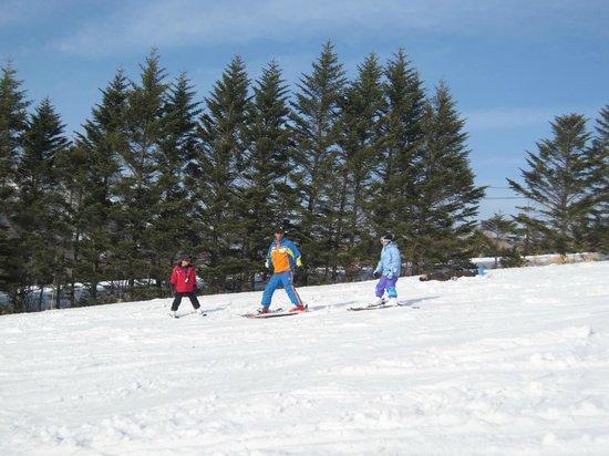 Shiga Park Hotel : スキースクール風景