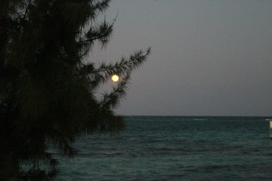 Blackbird Caye Resort: Blackbird Caye faces due east: a full moon rising.