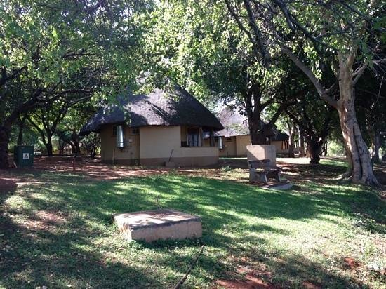 Crocodile Bridge Rest Camp: Crocodile Bridge 3 bed Rondavel