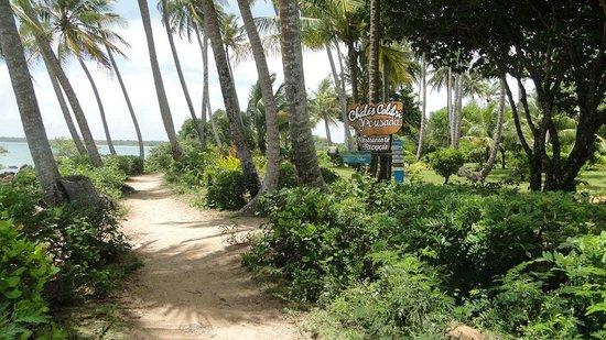 Chales Colibri Morere: Camino de acceso