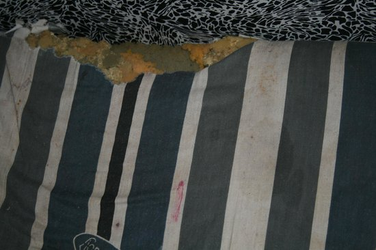 Ocean Blue Residence: Our deluxe room mattrass. Is it torn or has something eaten it? Not sure