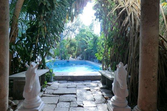 Hotel Trinidad Galeria: Der Pool