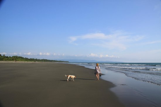 The Zancudo Lodge: Black Sand Beach