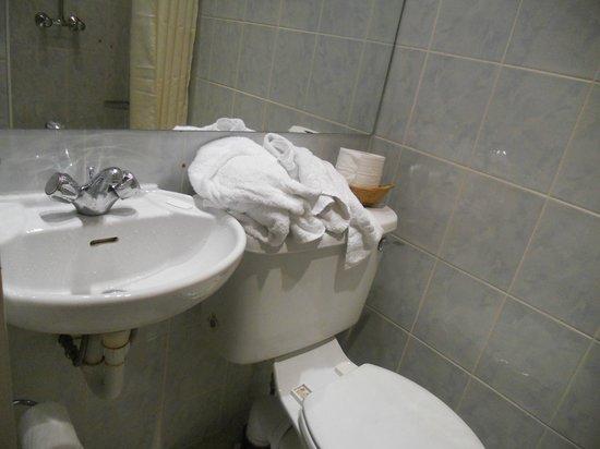 Westbury Hotel Kensington: bagno 1