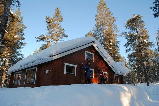 Hotel Jeris: The cabin