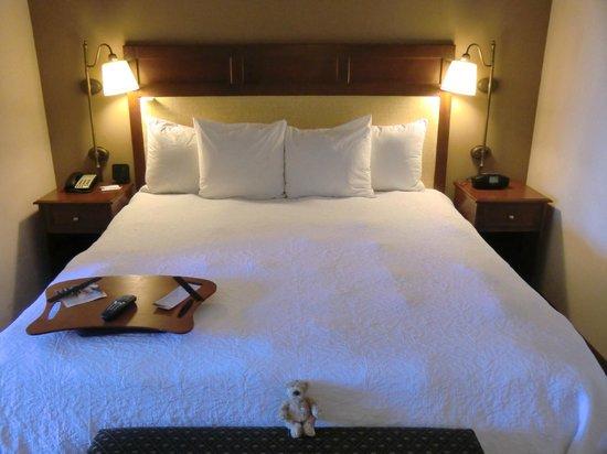 Hampton Inn & Suites Jekyll Island: King Bett