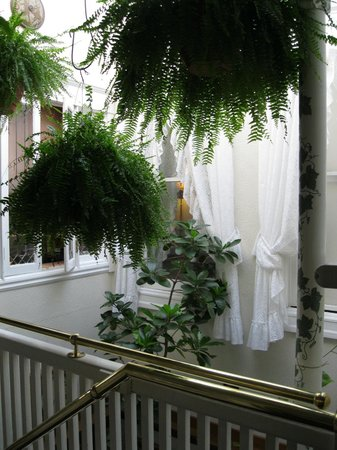 San Remo Hotel: Our hallways are decorated with antiques and an abundance of foliage.