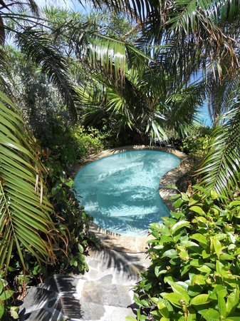 Rosewood Little Dix Bay: Small secluded pool at spa