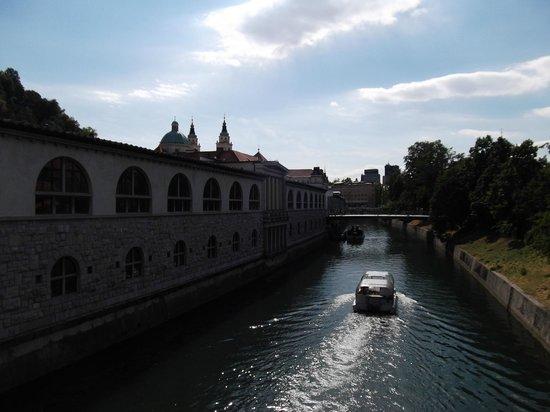River Ljubljanica Kanal: ....