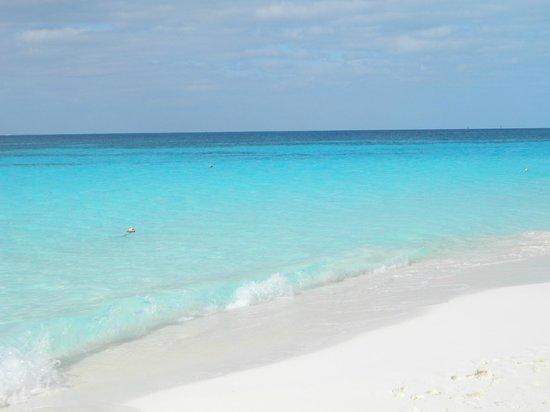 Sirena Beach : AMAZING!!!